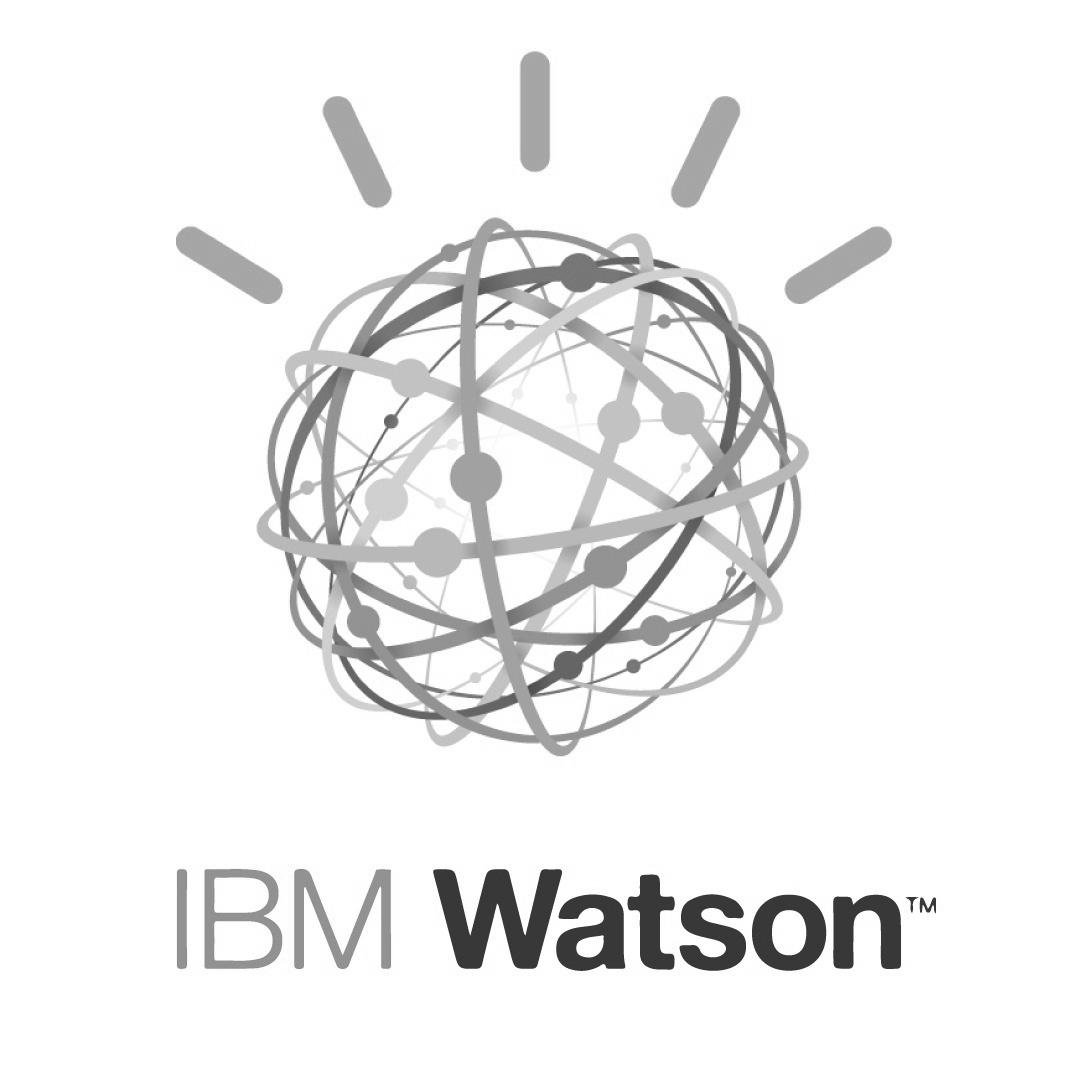 IBM-watson-logo-ConvertImage (1).jpg