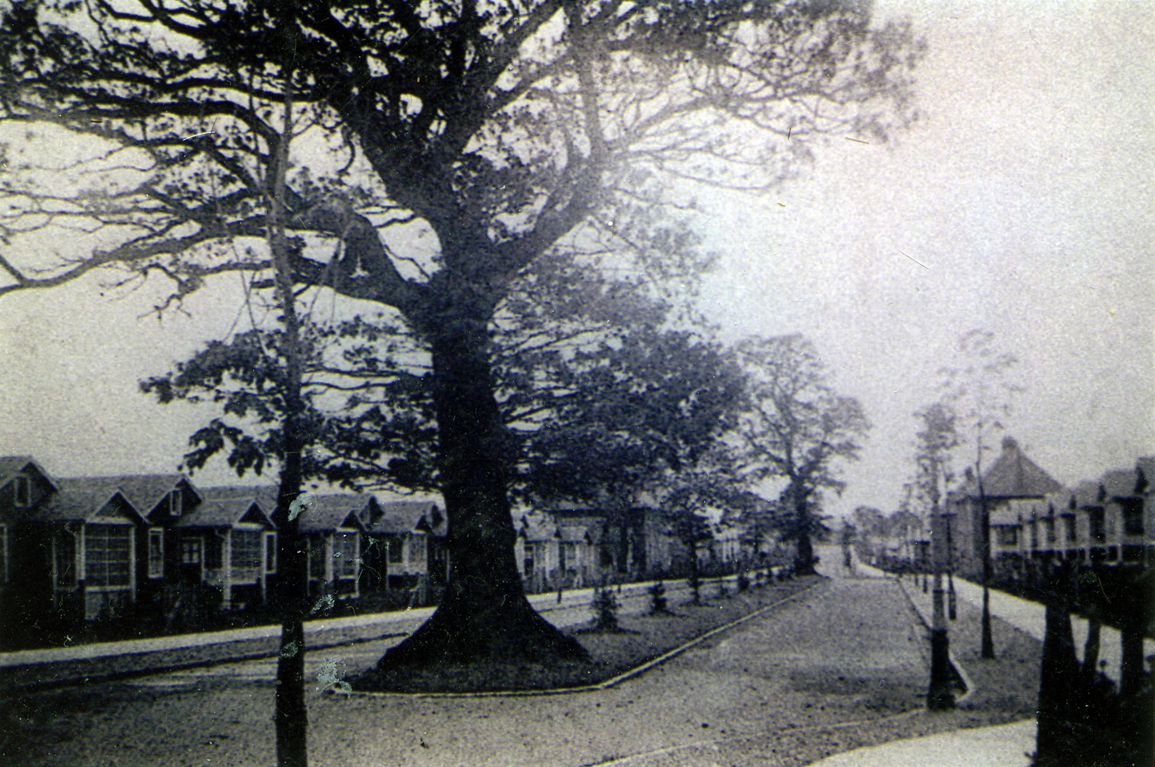 Central Avenue, c.1918