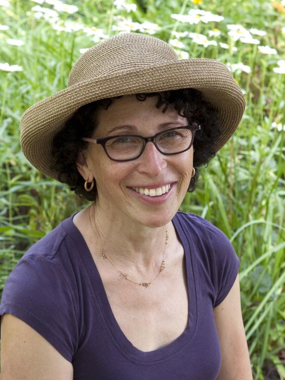 Andrea Steinberg     GLDesigns     Rain Gardens