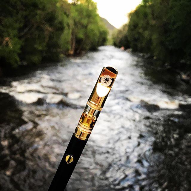 a 710N 0N a R0AR path!! #710gallery #710society #future #diamonds #oakley #710dabs #wizkhalifa #redbull #420 #kush #cannabis #cannabiscommunity #cannabisculture #delta8 #dopemagazine #solventless #cbd #travisscott #thc #antidote #marijuana #marley #710 #drake #hightimes #distillate #concentrates #lionofjudah #dabs #terps