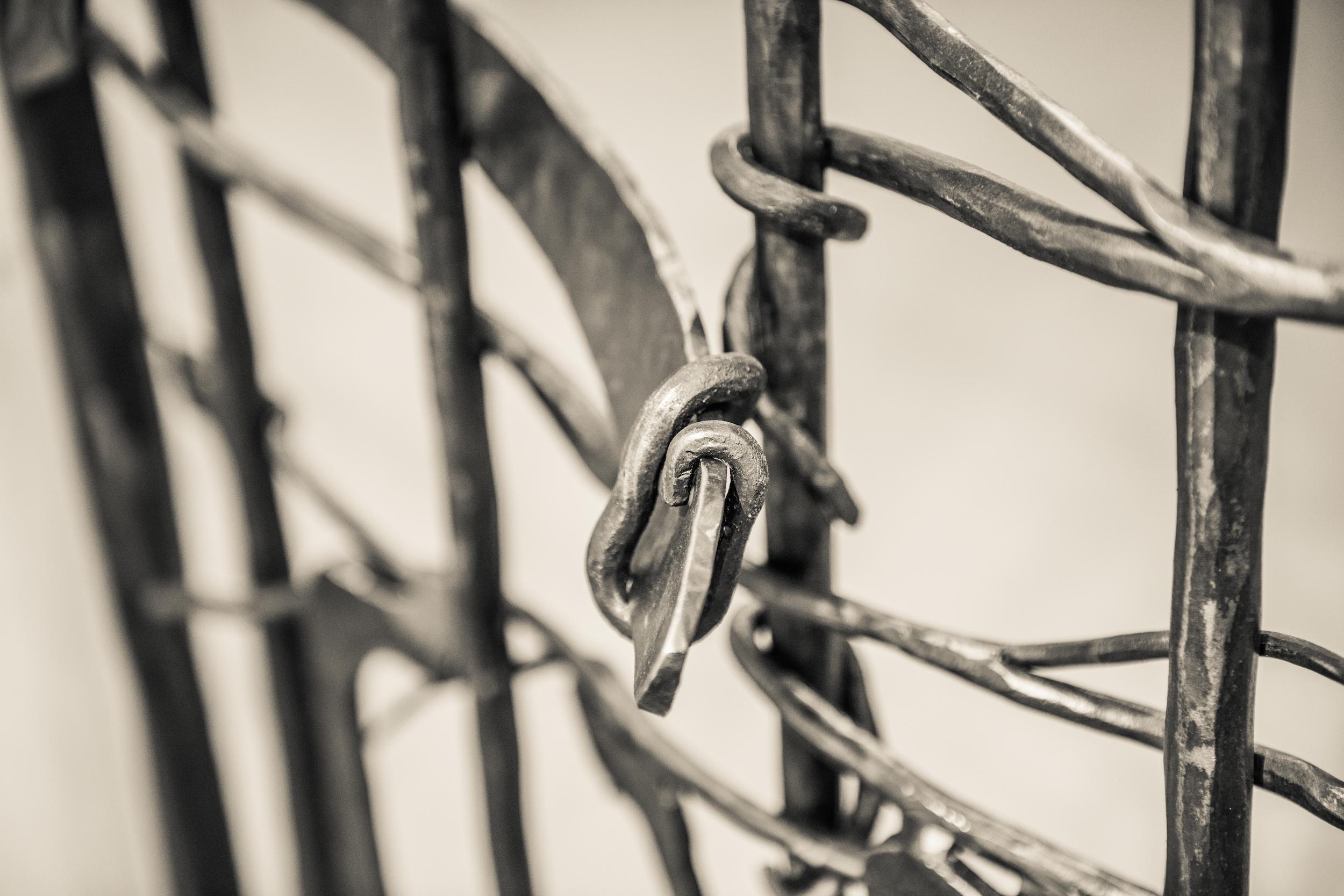 fencelines4.jpeg
