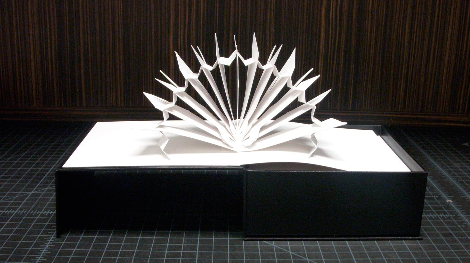 Barneys-New-York-Lady-Gaga-Design-Packaging-3.4.jpg