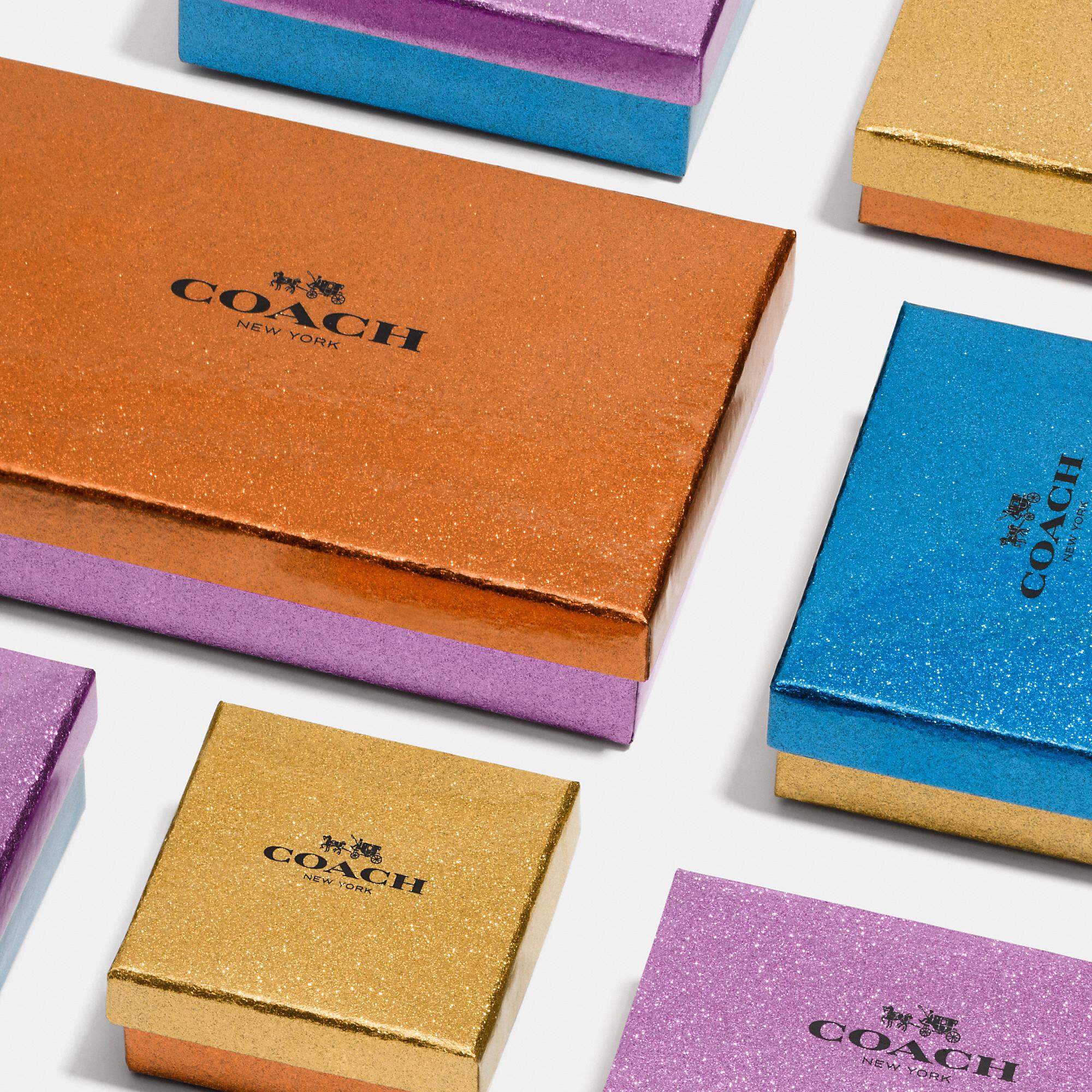 Coach-Boxes-结构 - 零售包装 - 闪光 - 假期-2.jpeg