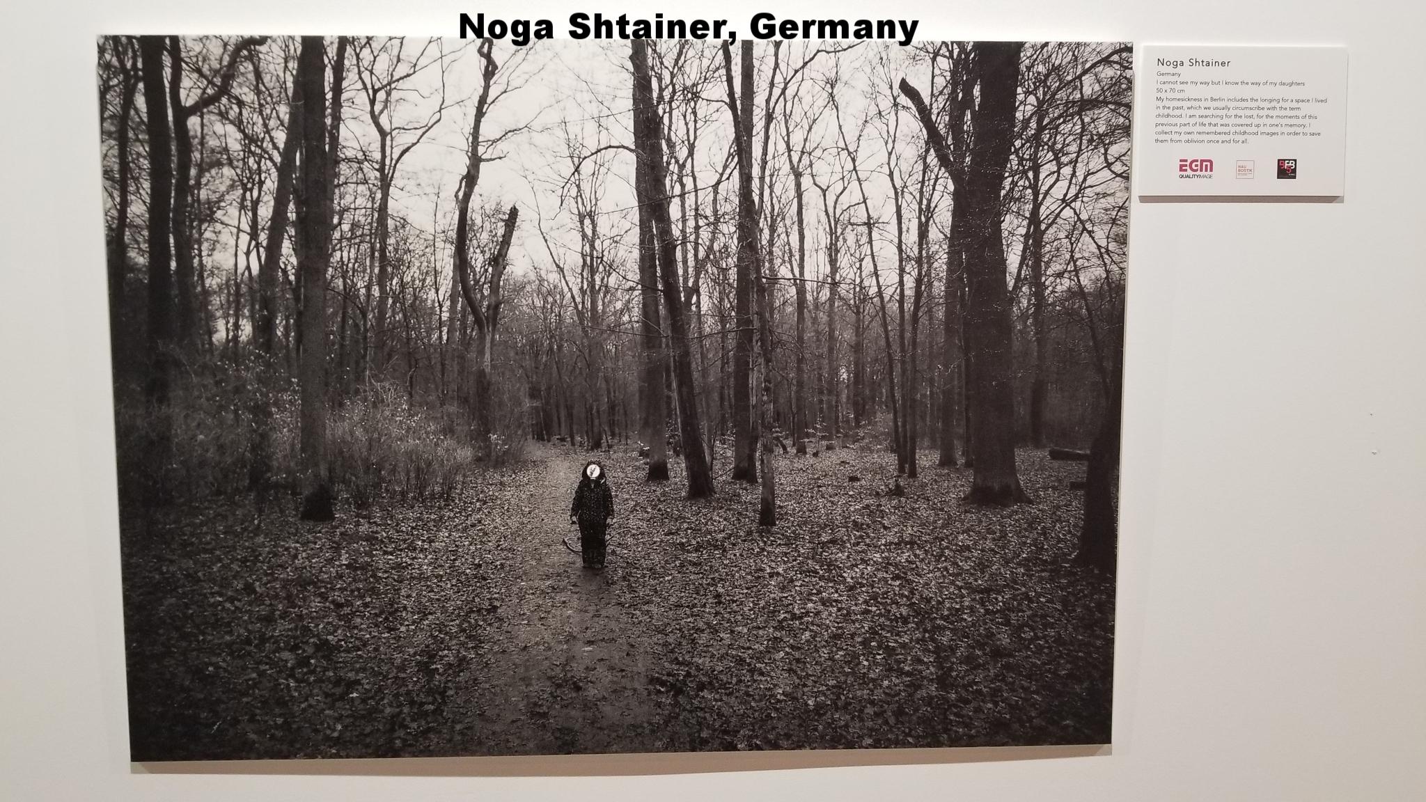 Noga Shtainer, Germany