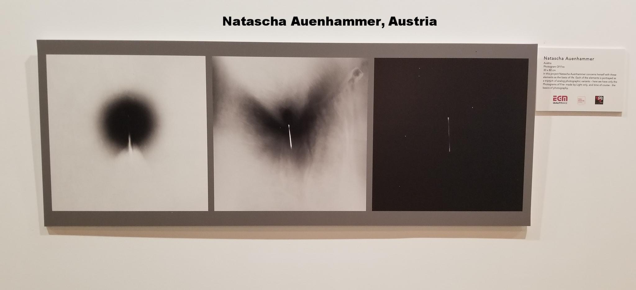 Natascha Auenhammer, Austria