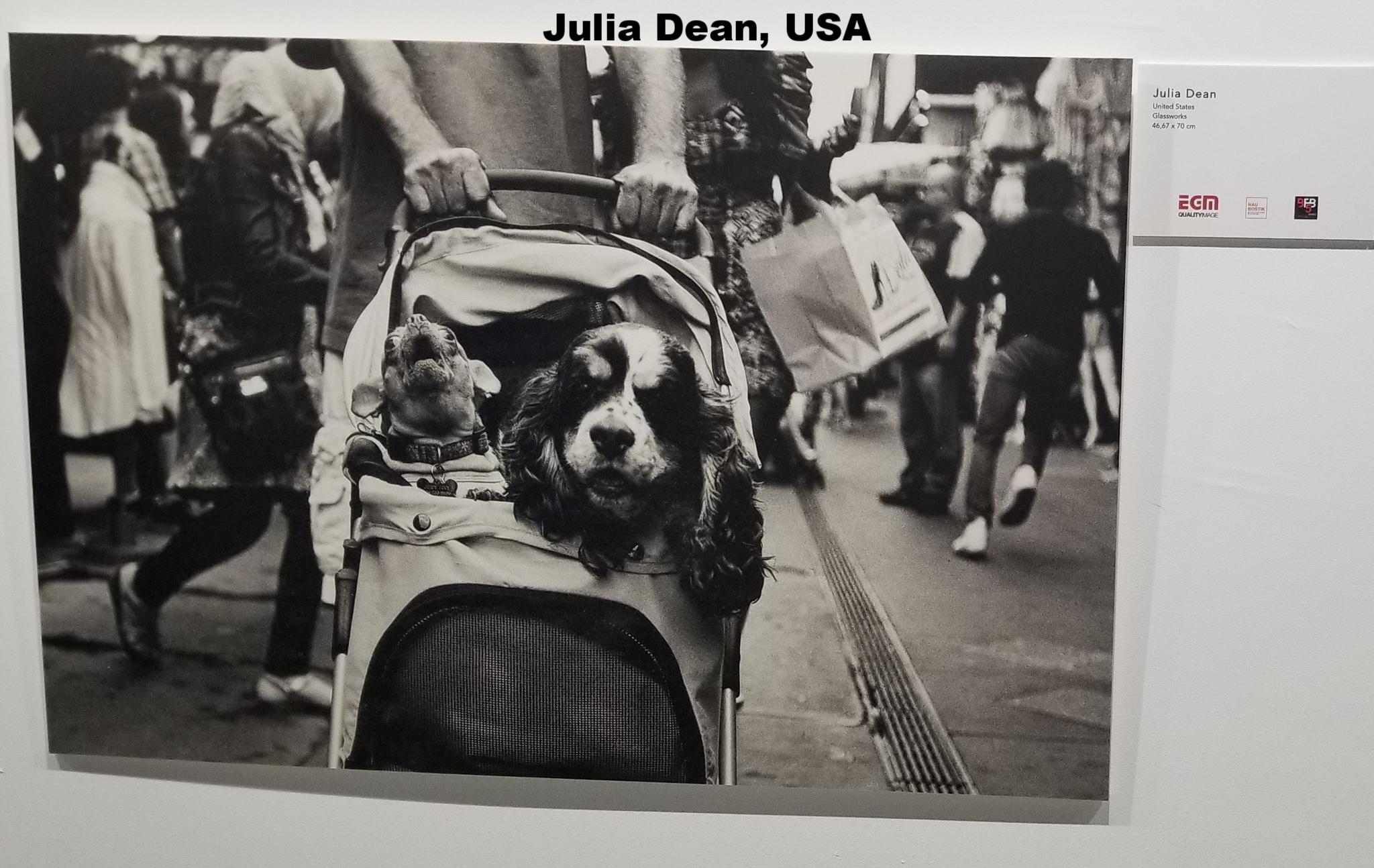 Julia Dean, United States