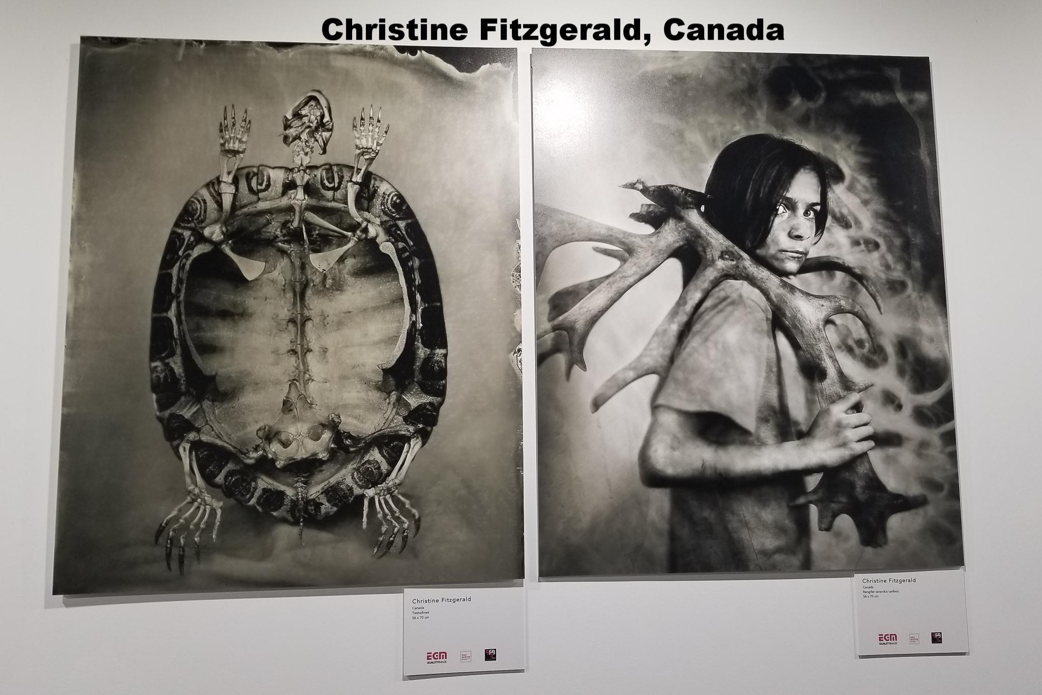 Christine Fitzgerald, Canada