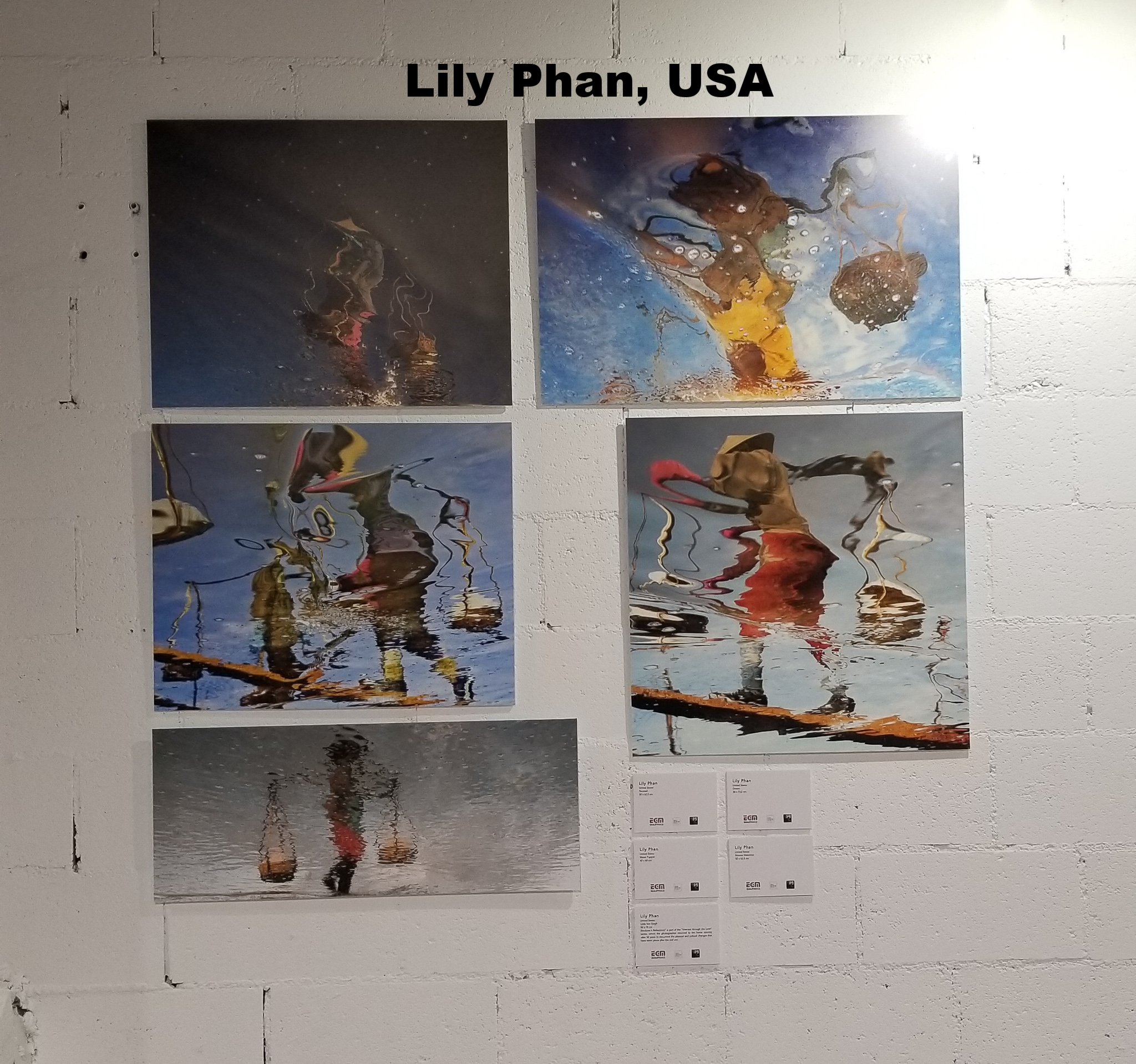 Lily Phan, United States
