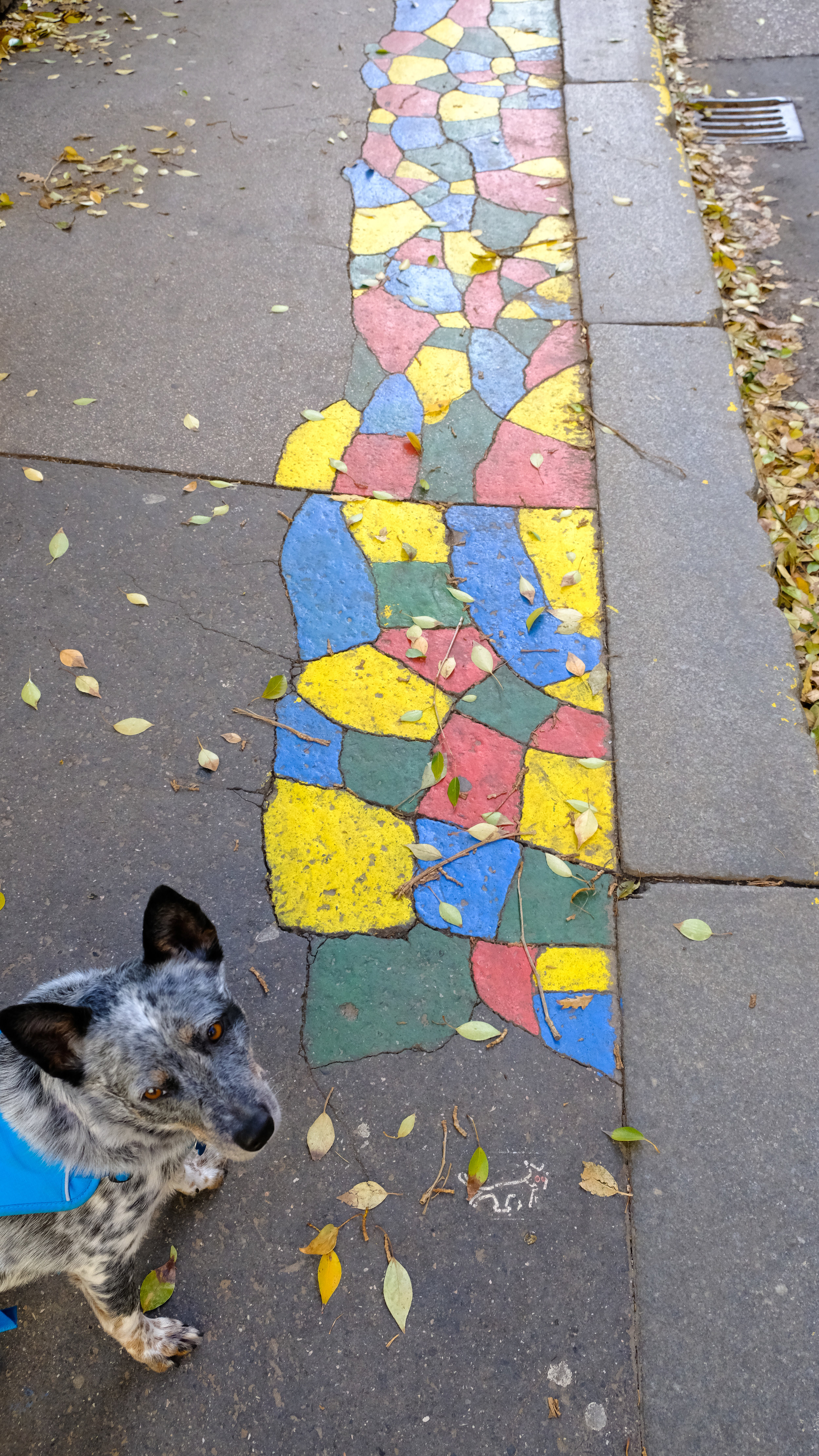 Sidewalk art with the iconic symbol for Budapest's satirical political party, Two-Tailed Dog. These colorfully painted sidewalk cracks can be seen in many places around the city… and are said to be a statement to the government regarding the poor state of infrastructure in some places.
