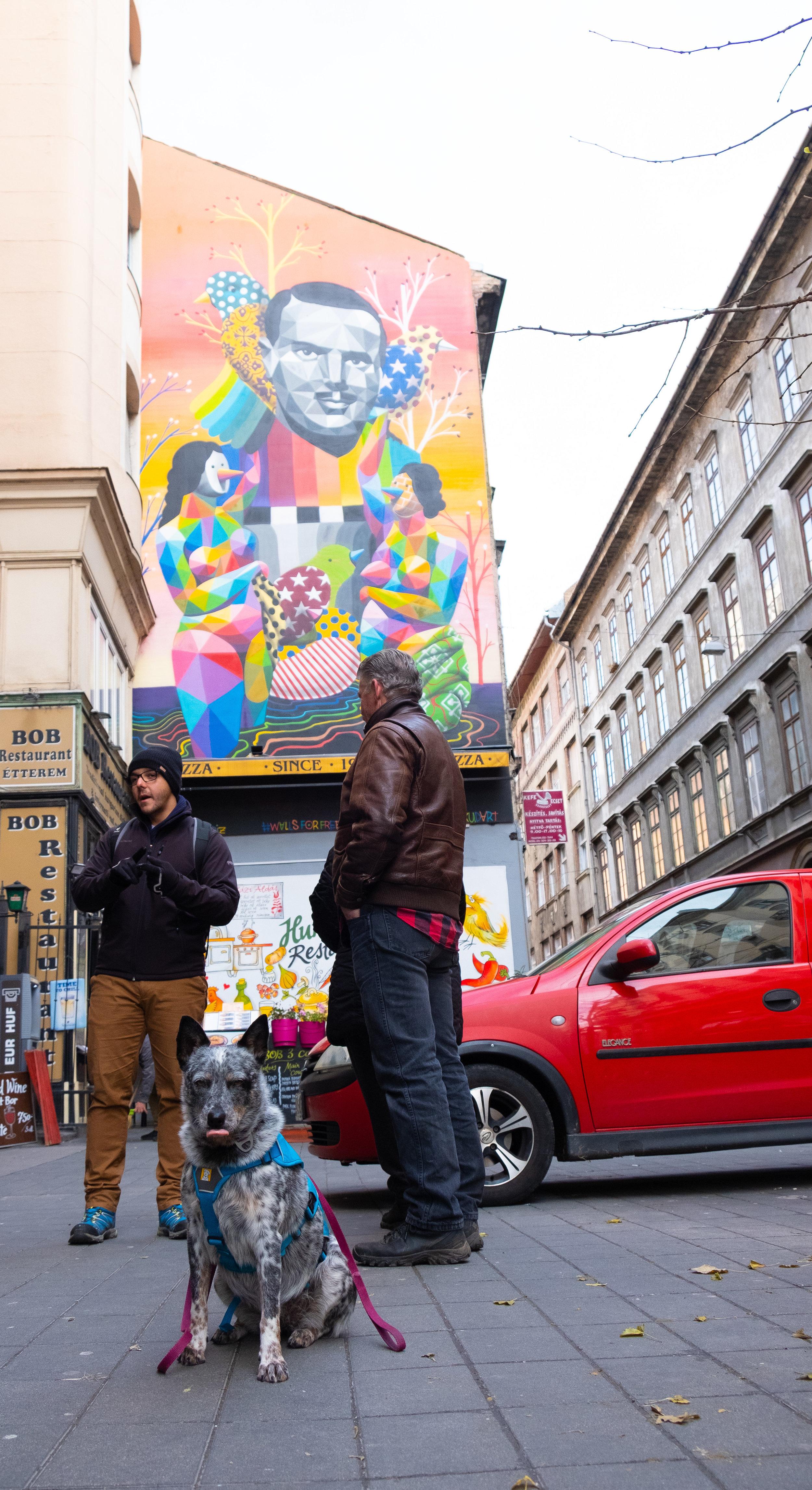 """Murals for Freedom"" by artist Okuda San Miguel ; Dob Utca"