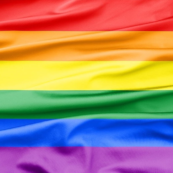 #PrideMonth is filled with many Pride events and festivities to celebrate the #LGBTQ communities coming together. June is dedicated to remembering the history of the LGBTQ community overcoming prejudice and gaining acceptance for who they are. 🏳️🌈