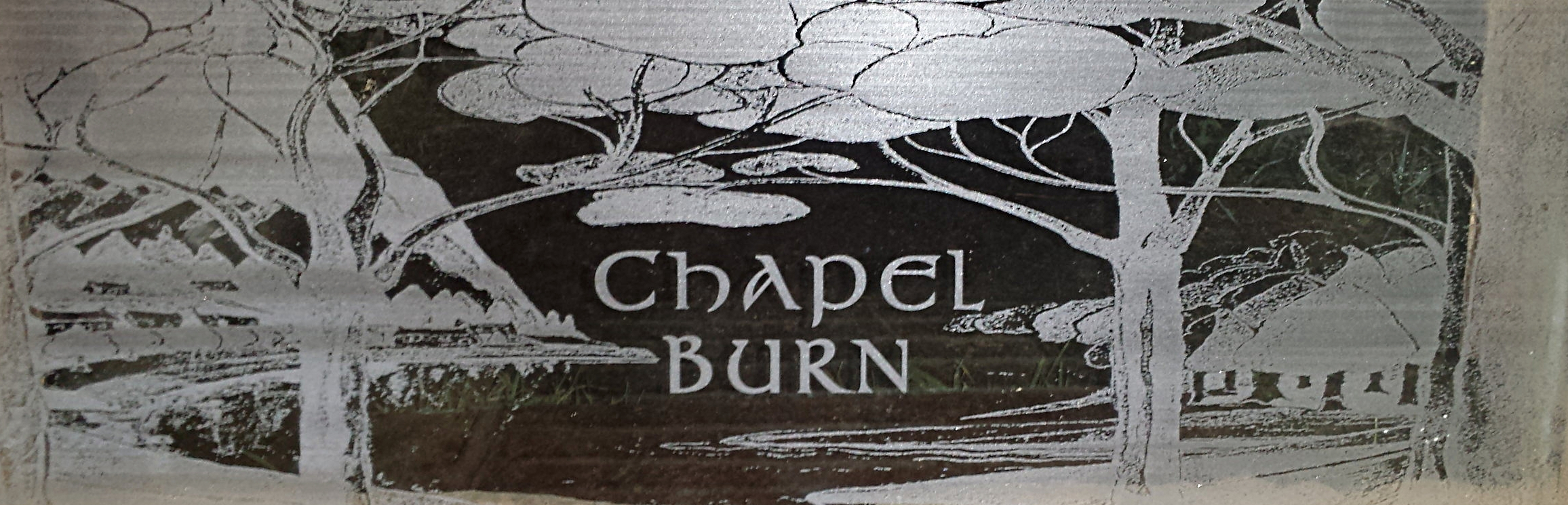 Chapel burn graphics.jpg