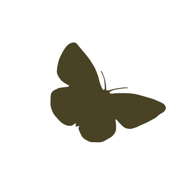 1.Butterfly-01.jpg