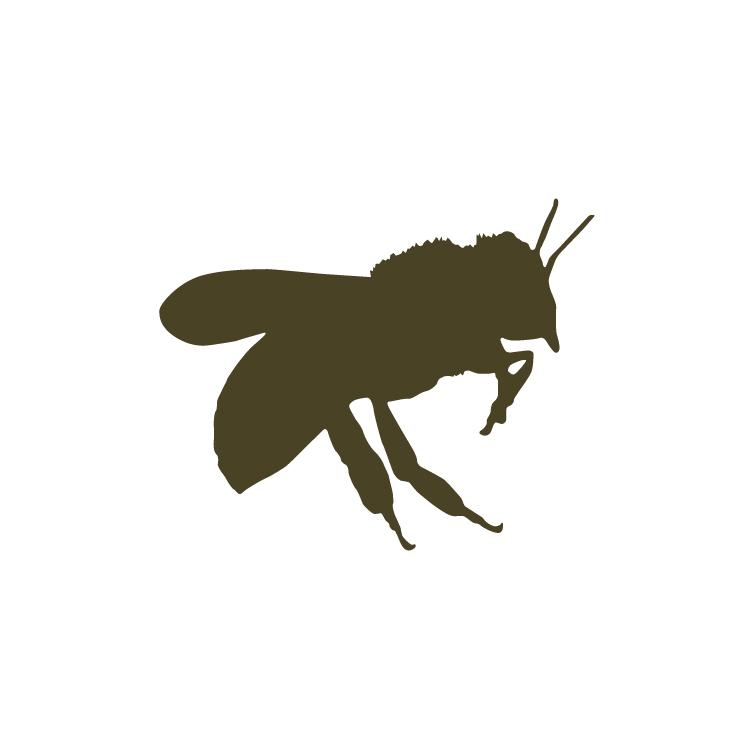 2.Bee-01.jpg