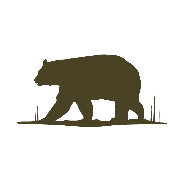 5.Bear-01.jpg