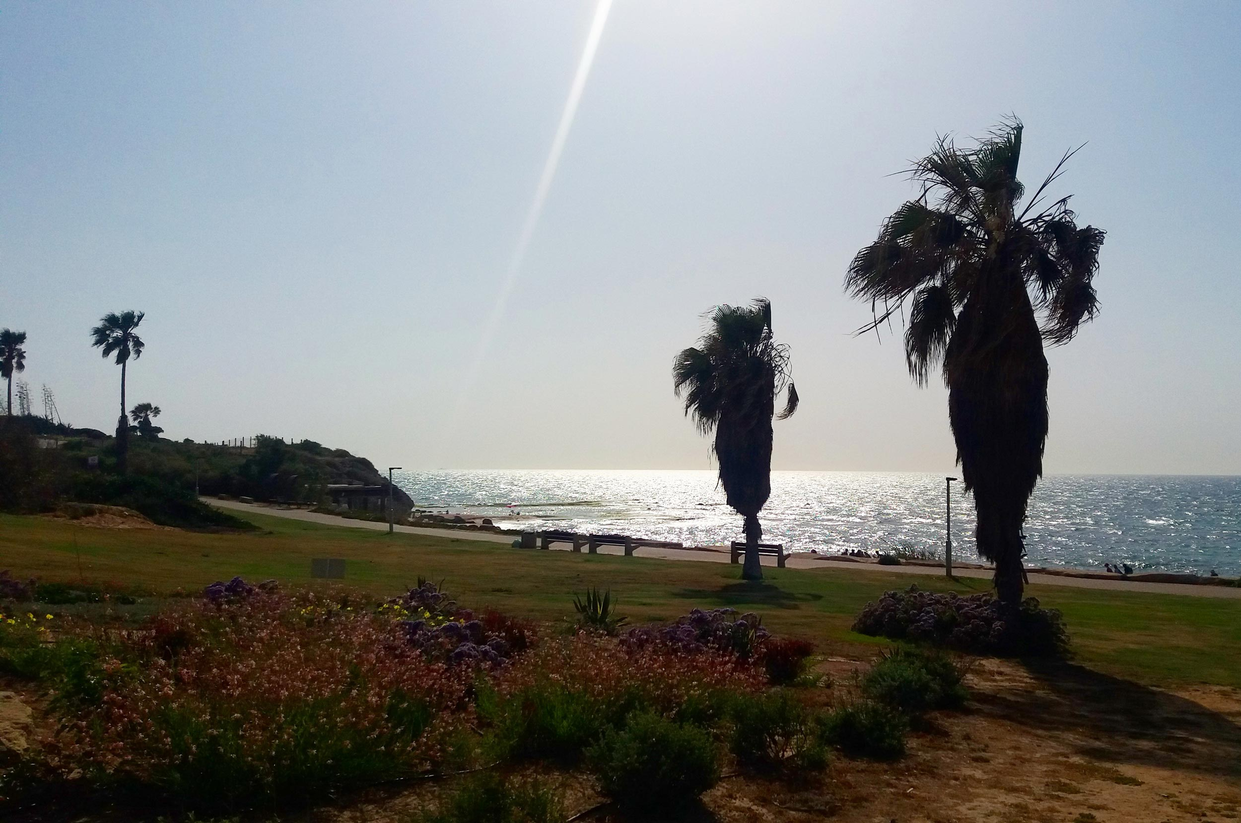 2 are better than 1 - reference to my boyfriend whom i missed a lot.  Palmahim beach in Israel is so adorable, a beauty under the sun! Picture taken on my trip in may 2017. This picture made me think about the story above, written june 2017.