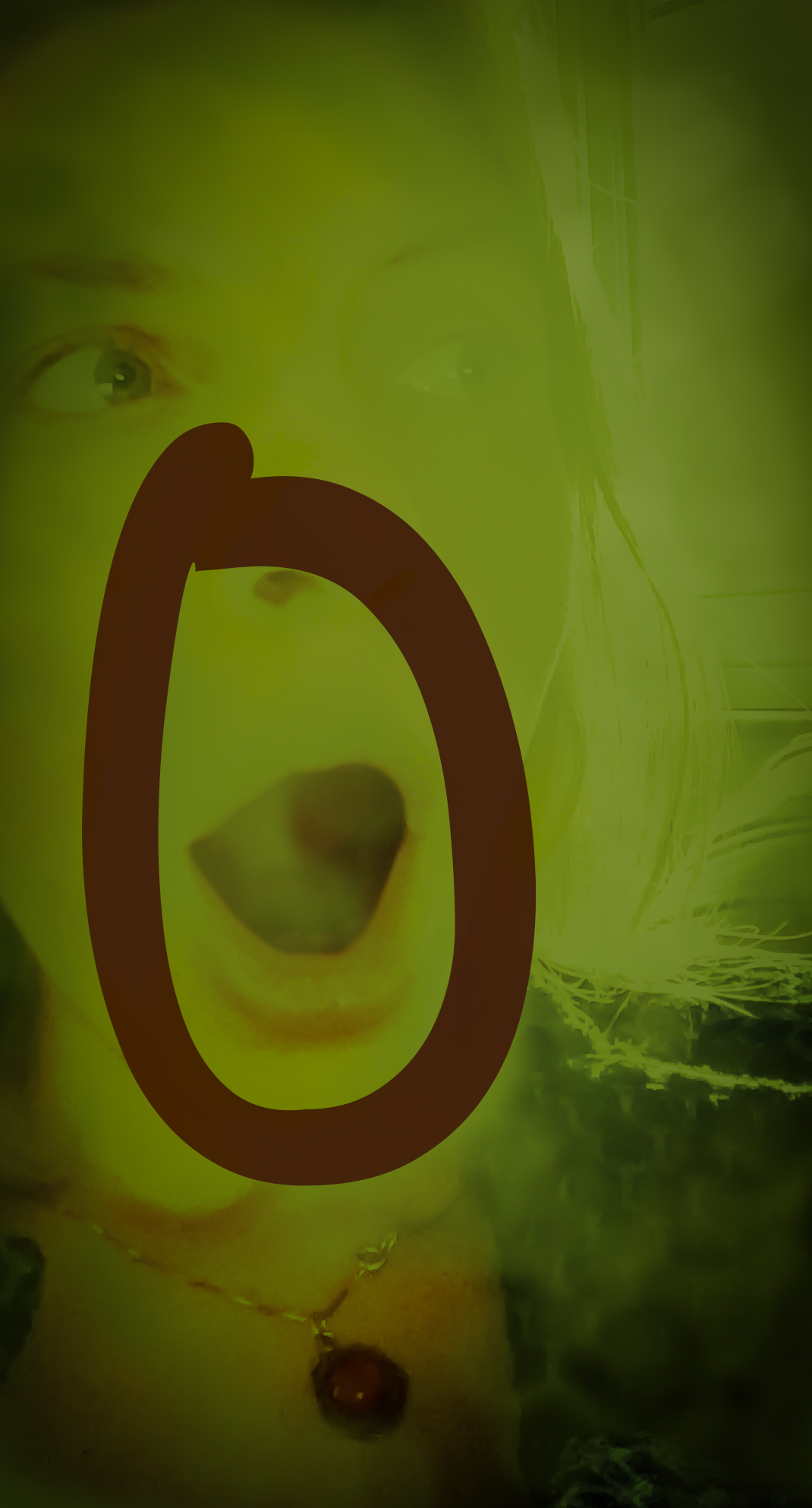 Letter-O.jpg
