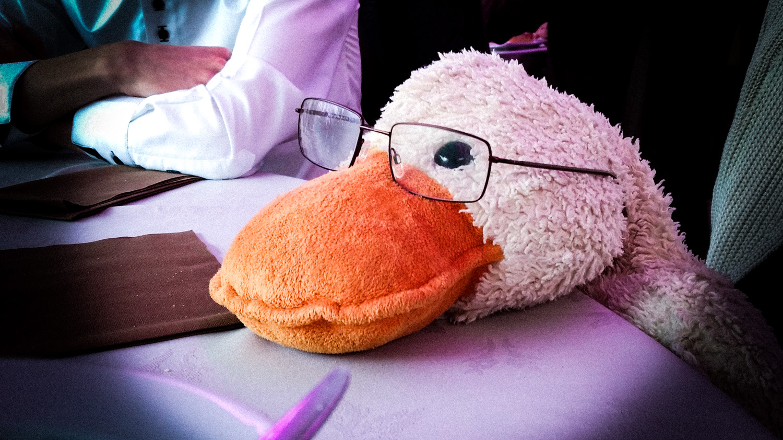 Wat gebeurt er hier? Wordt er hier geoordeeld?   Kind of feel this way … a nerdy duck!!!