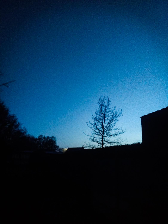 Early morning talks… -