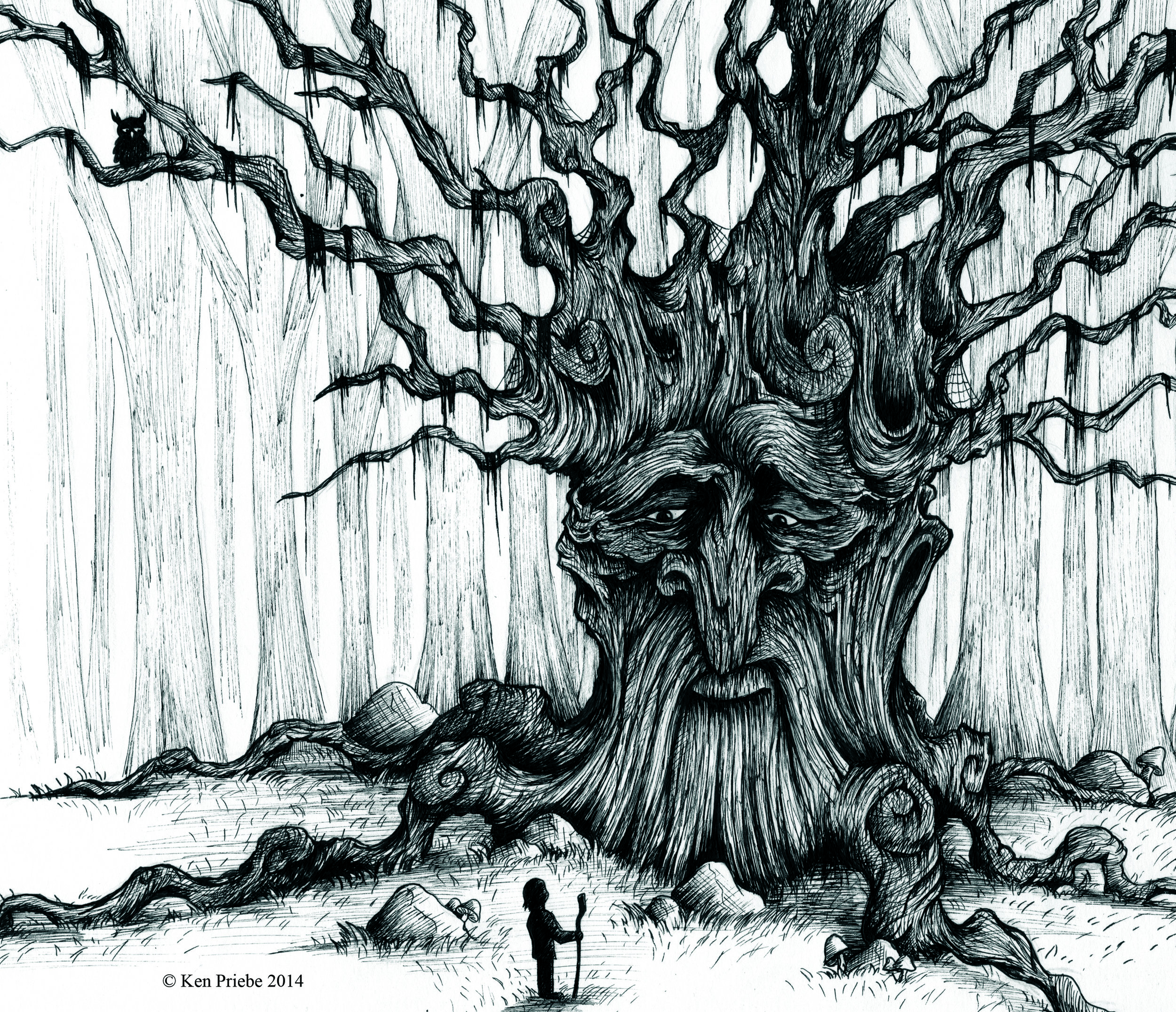 Wise Ancient Tree.jpg