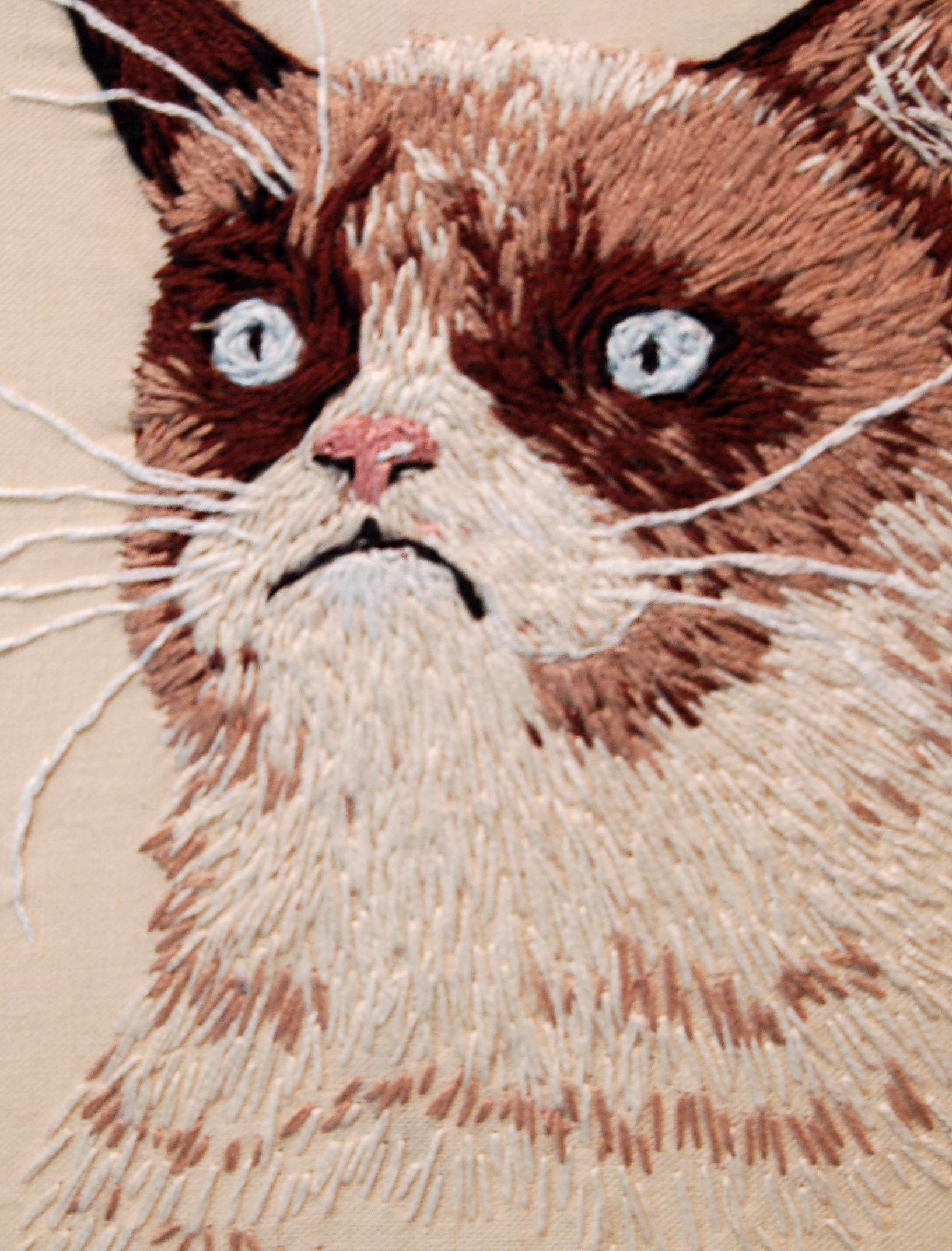 #GrumpyCat, detail