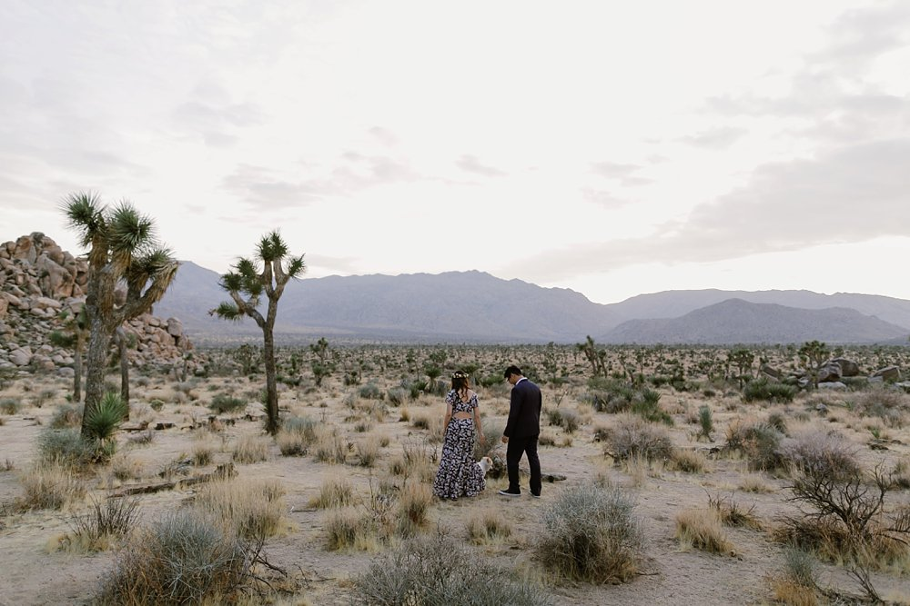 Joshua Tree Engagement shoot_0000.jpg