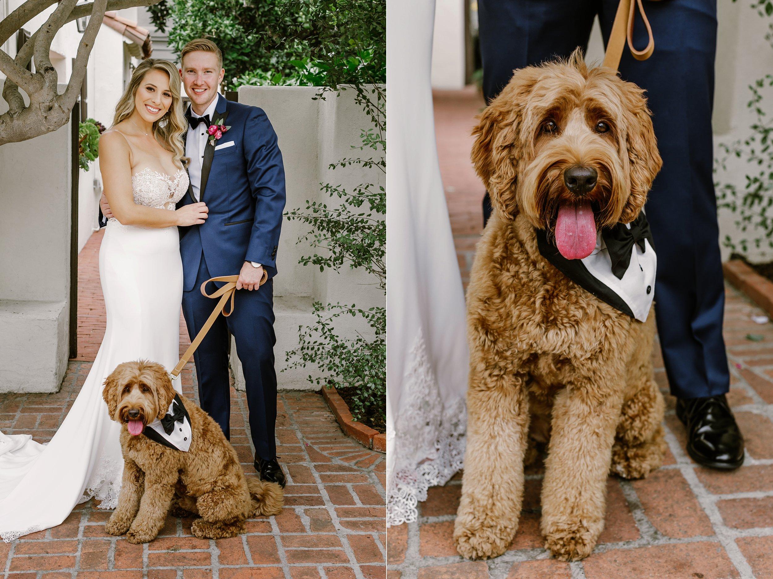 Briana and Sean Darlington House La Jolla Wedding_0019.jpg