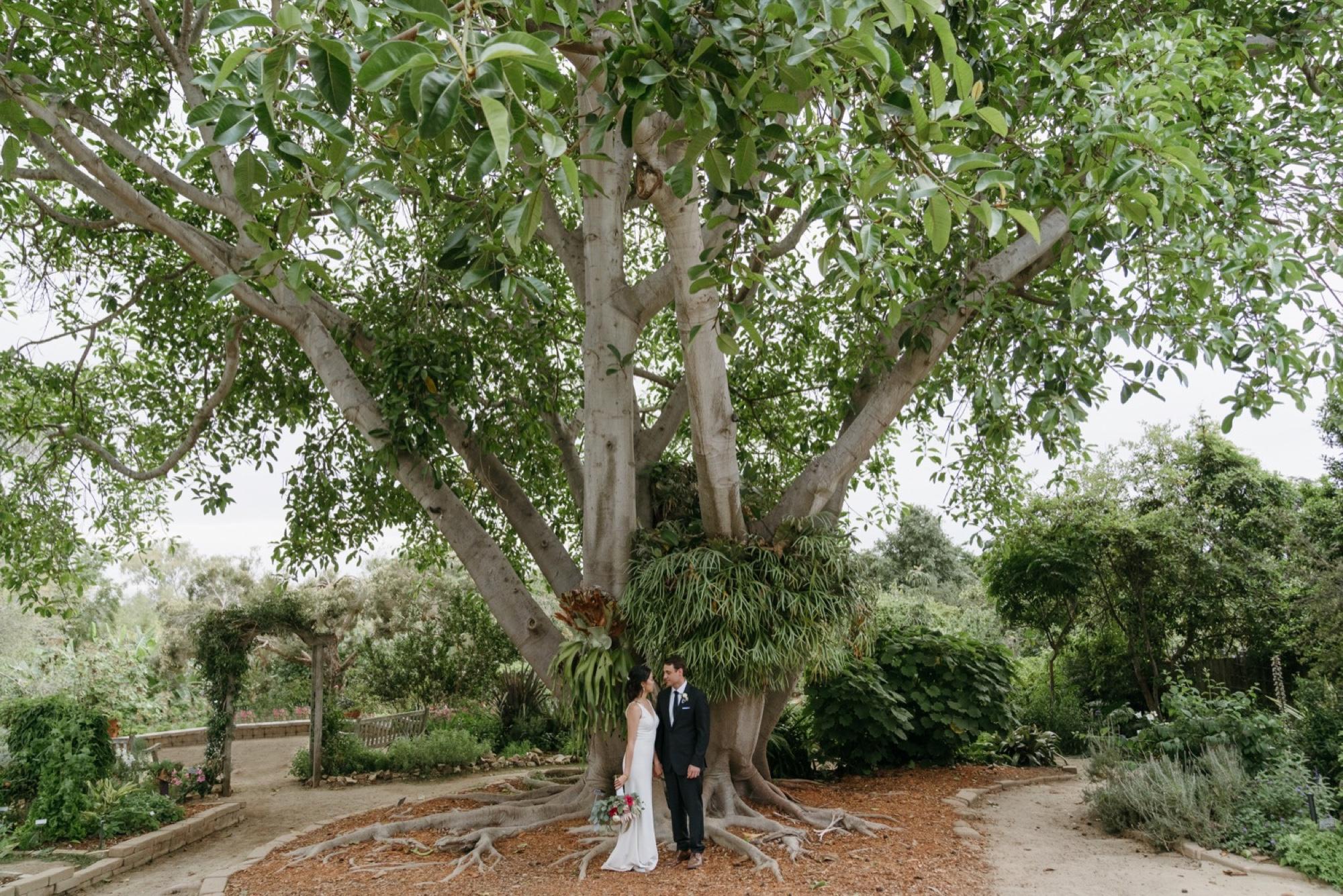 088_Shawna and Steve's Wedding-552.jpg