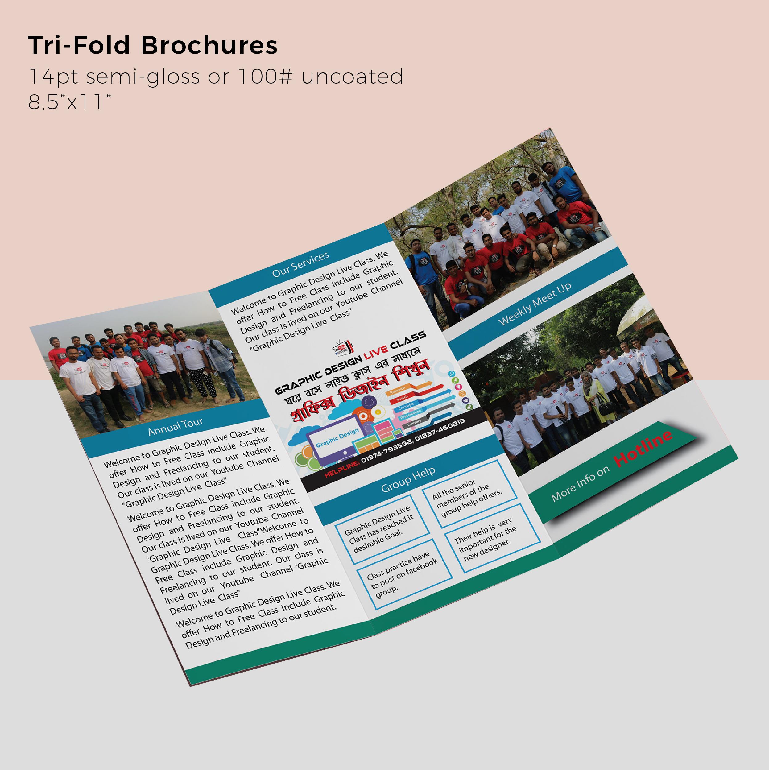 trifold_productdisplay.jpg