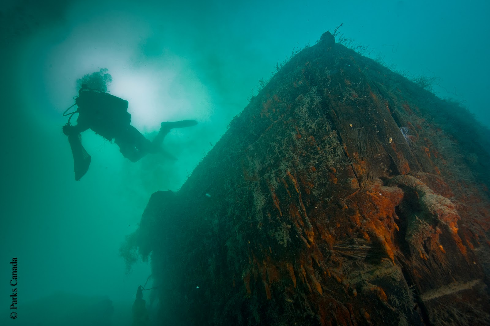 The bow of the  Investigator  in 2011. Image from Parks Canada.