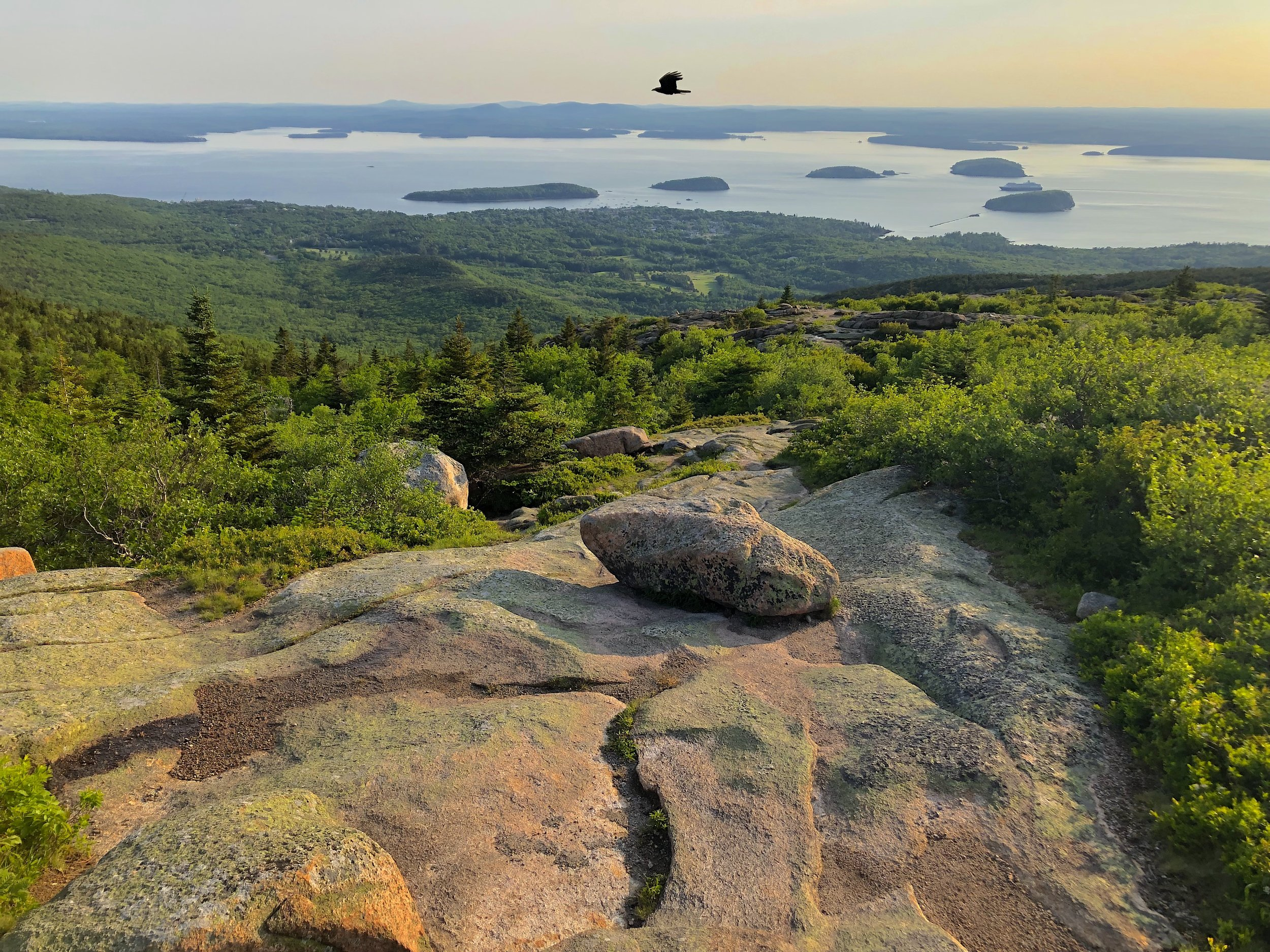 View from the summit of Cadillac Mountain (Acadia National Park)