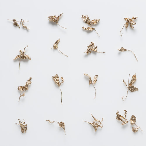Yu-Wen Wu , Not All Alike (detail), 40 x 40, gilded tea leaves