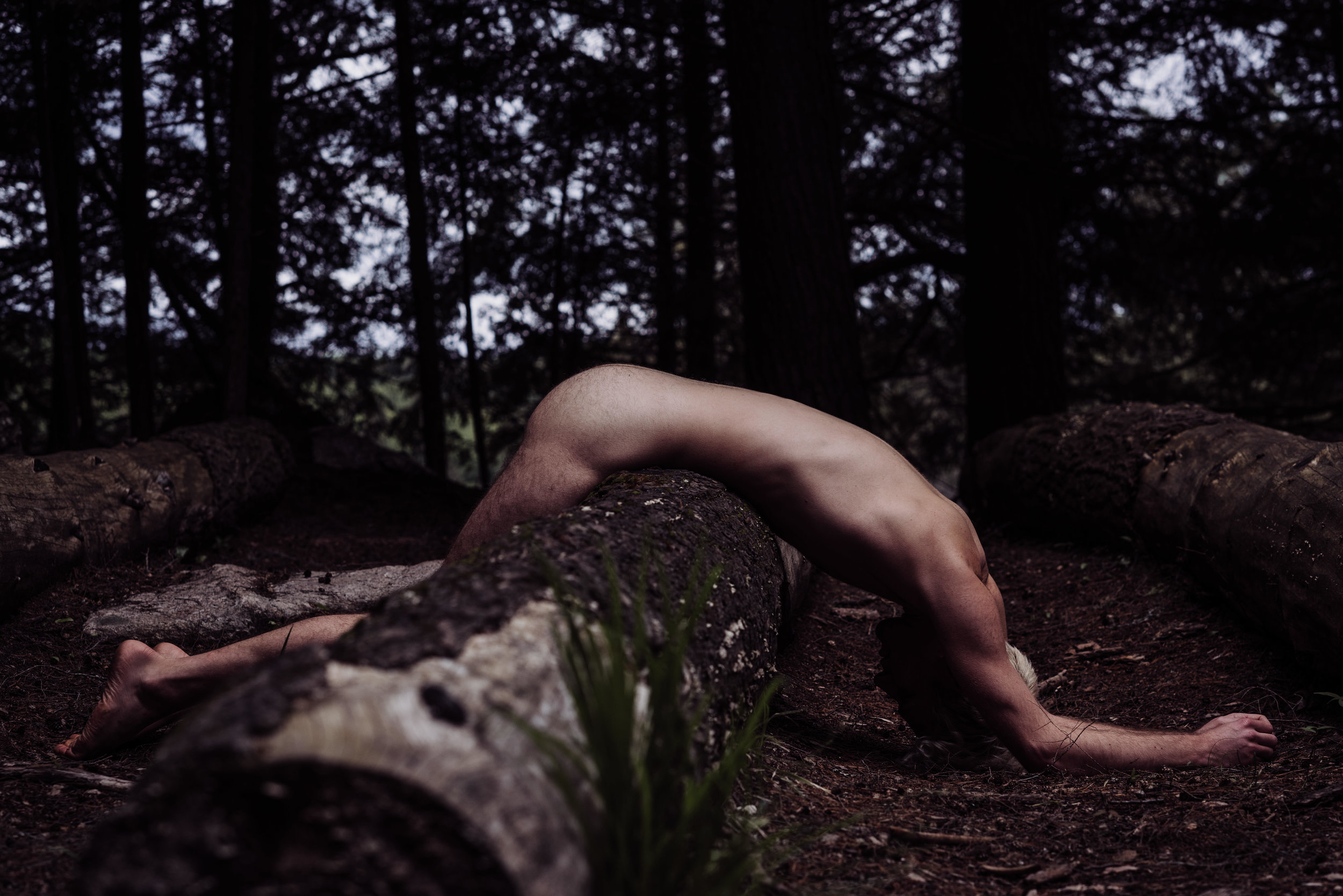 Oklahoma City boudoir photographer male boudoir man lying on log outdoors