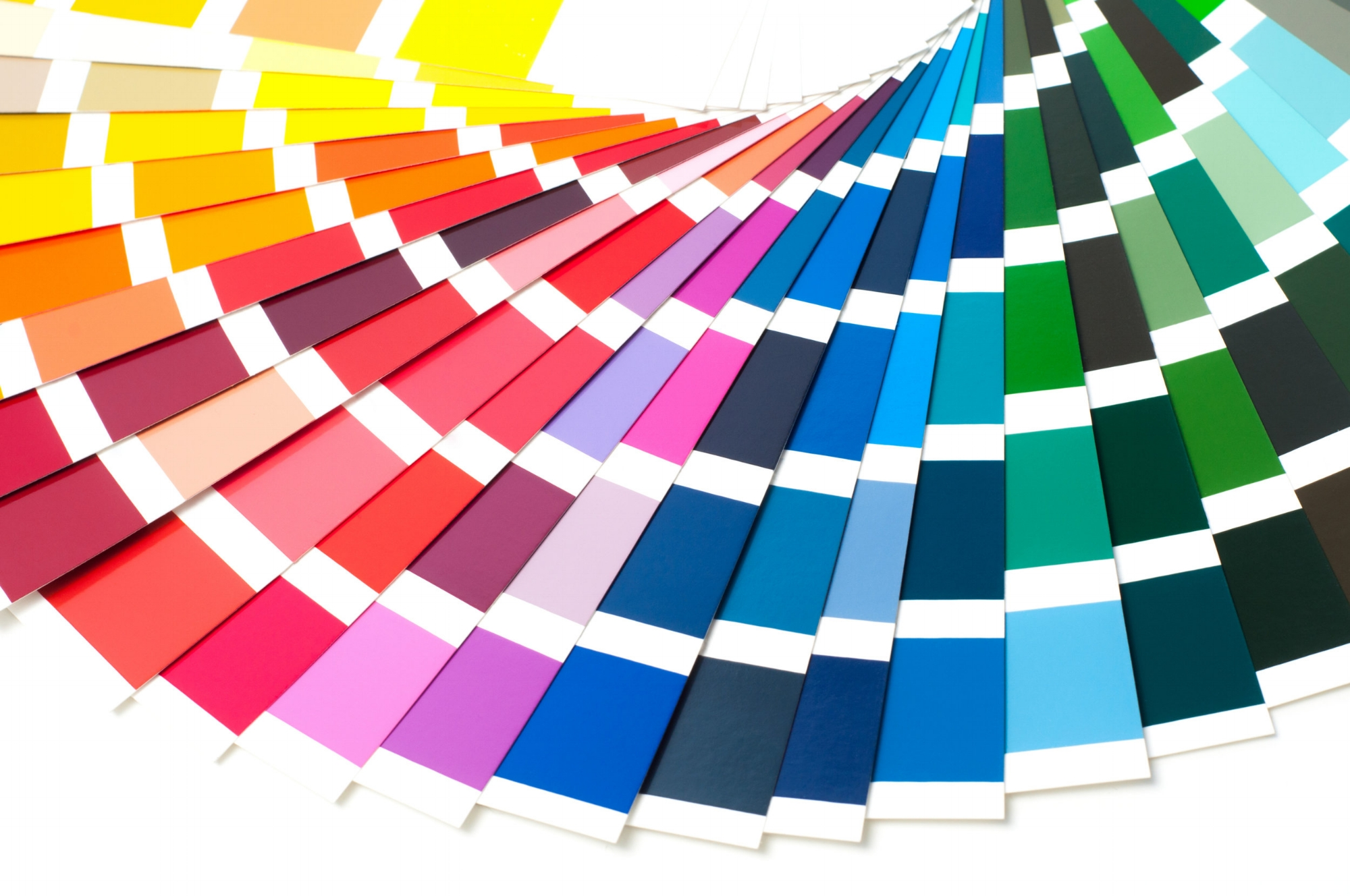 Paint Swatches.jpg