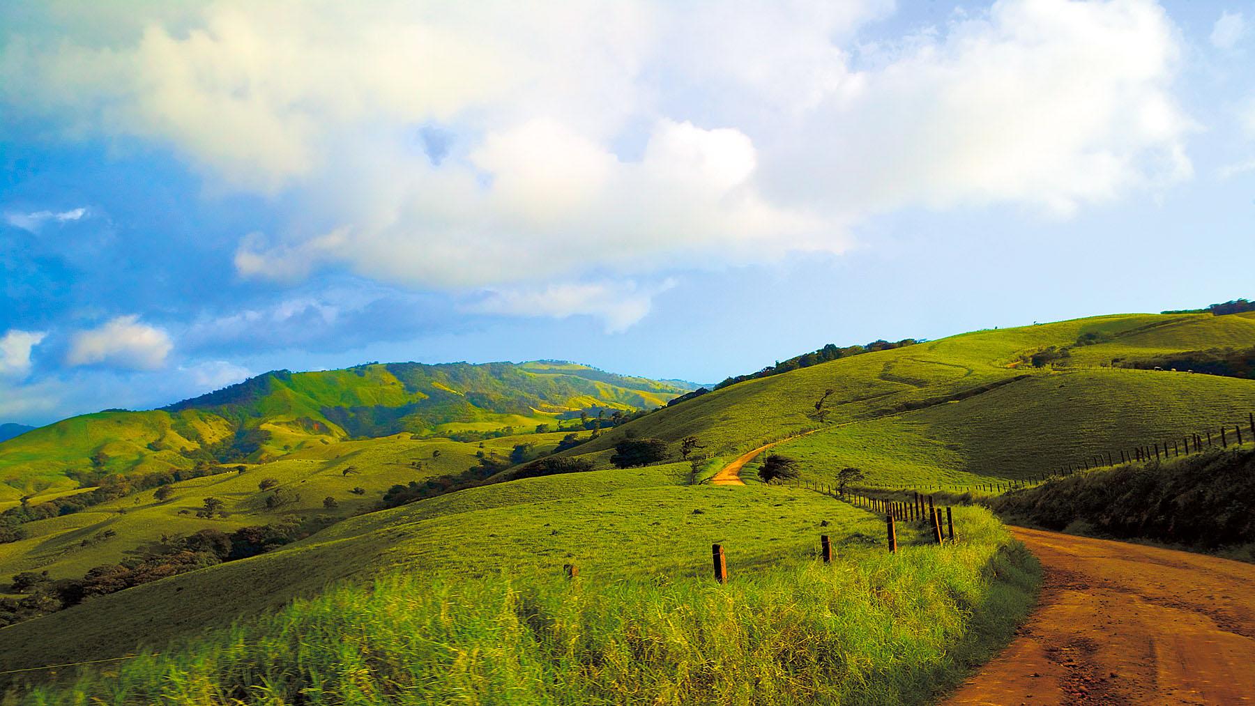 Road To Monteverde, Costa Rica