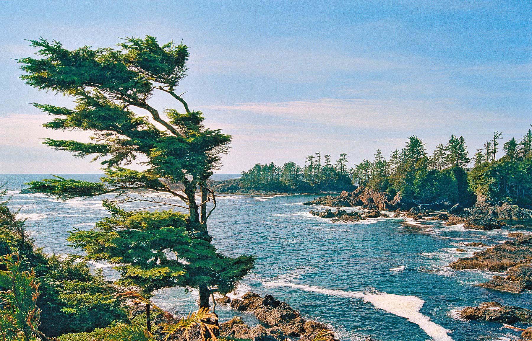 Wild Pacific Trail, Uclulet, British Columbia
