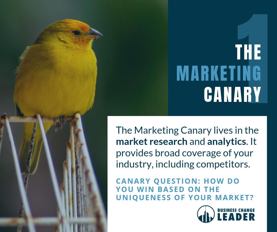 The Marketing Canary