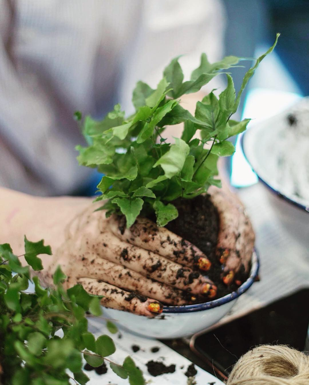 Pilea Plant Shop Kokedama Making Workshop.JPG
