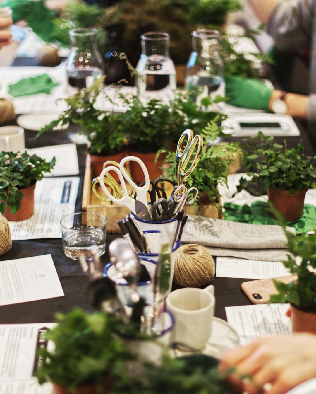 Pilea Plant Shop Kokedama Workshop Table.JPG