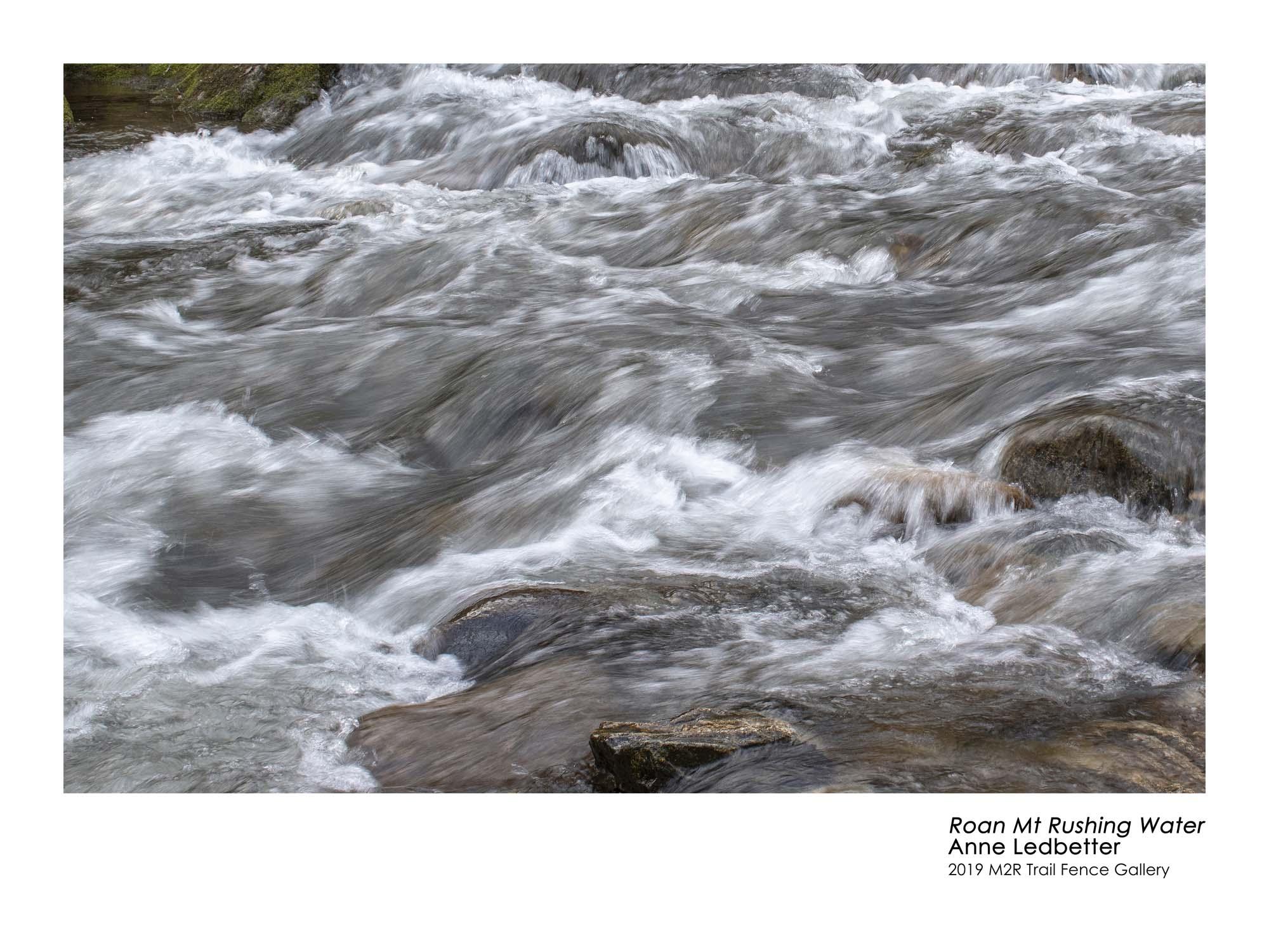 Anne_Ledbetter_RoanMtRushing Water - Anne Ledbetter.jpg