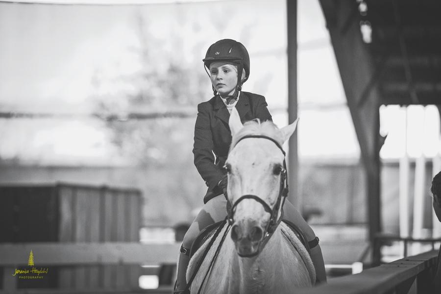 horse_jumping_2015_4web