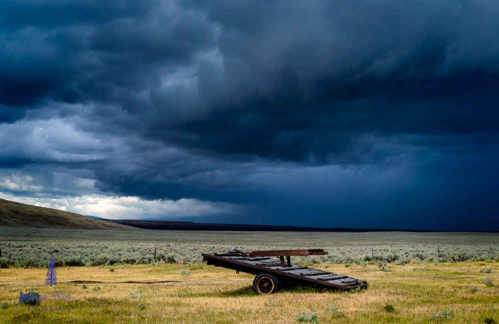 storm_wisdom_montana_1