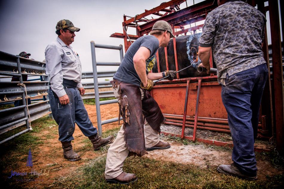 ranch_life_29