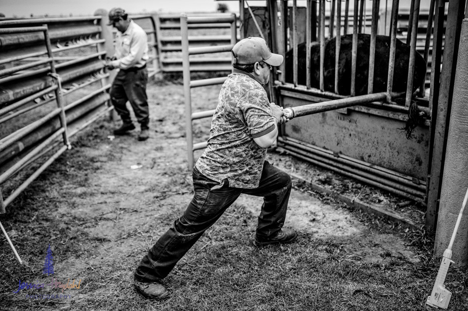 ranch_life_8