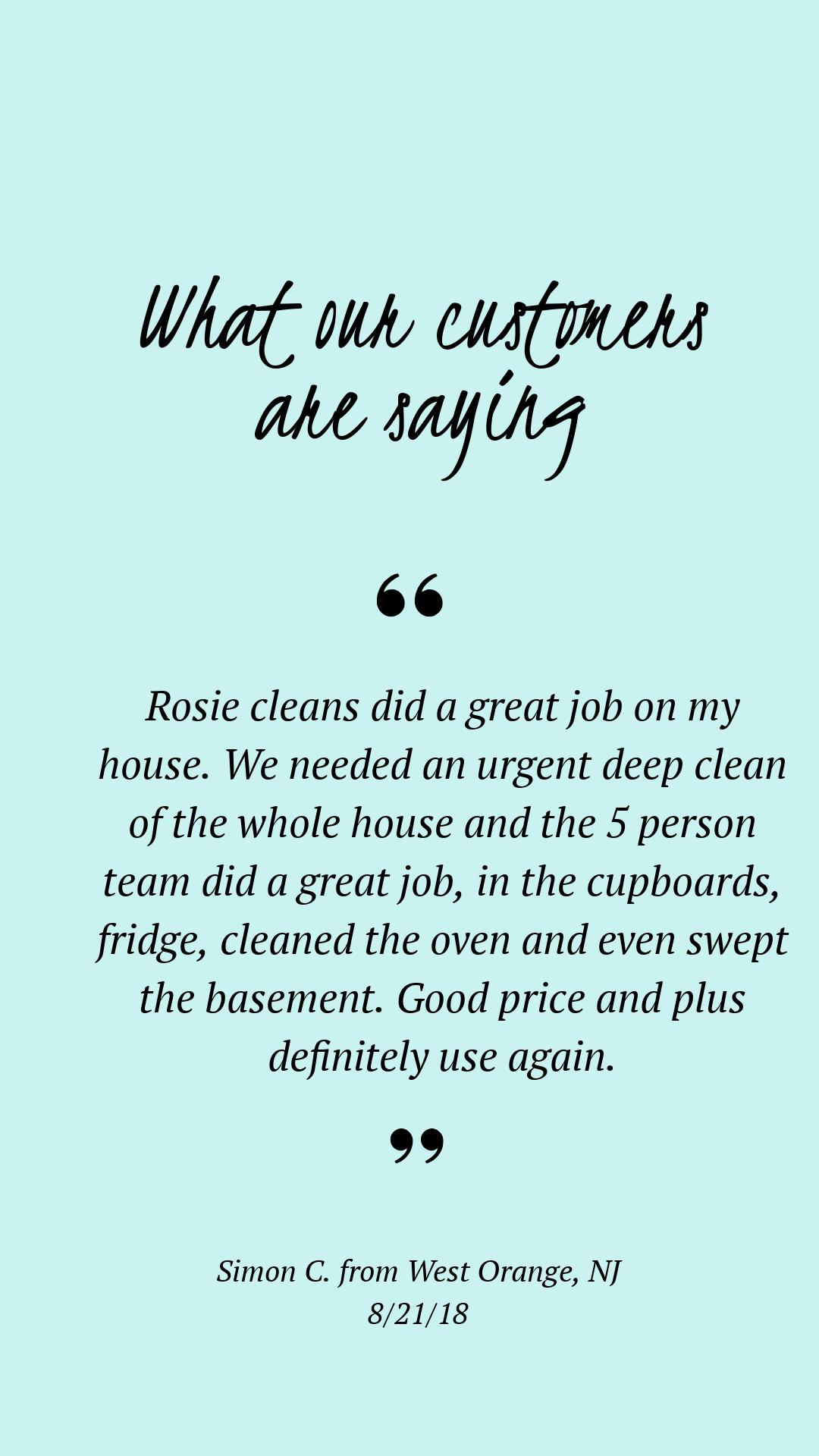 Rosie Cleans Background Check