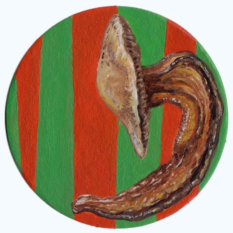 Slugshroom
