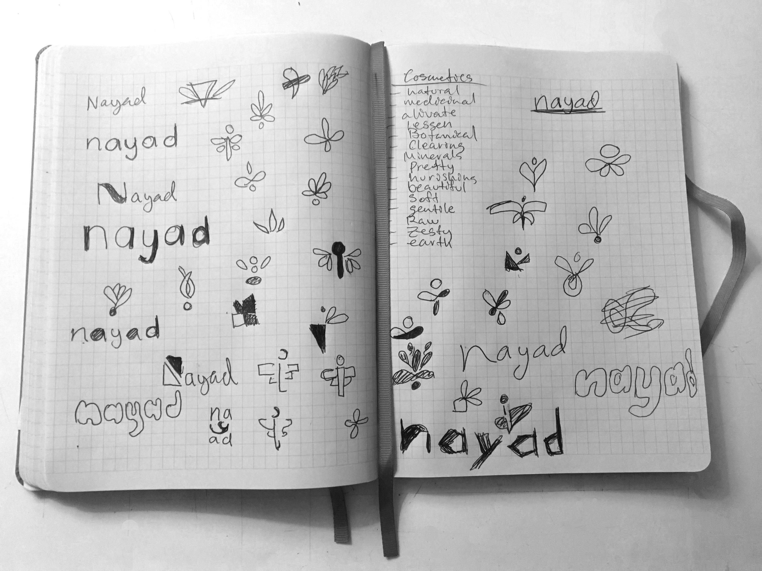 process_pic_nayad_notebook.jpg