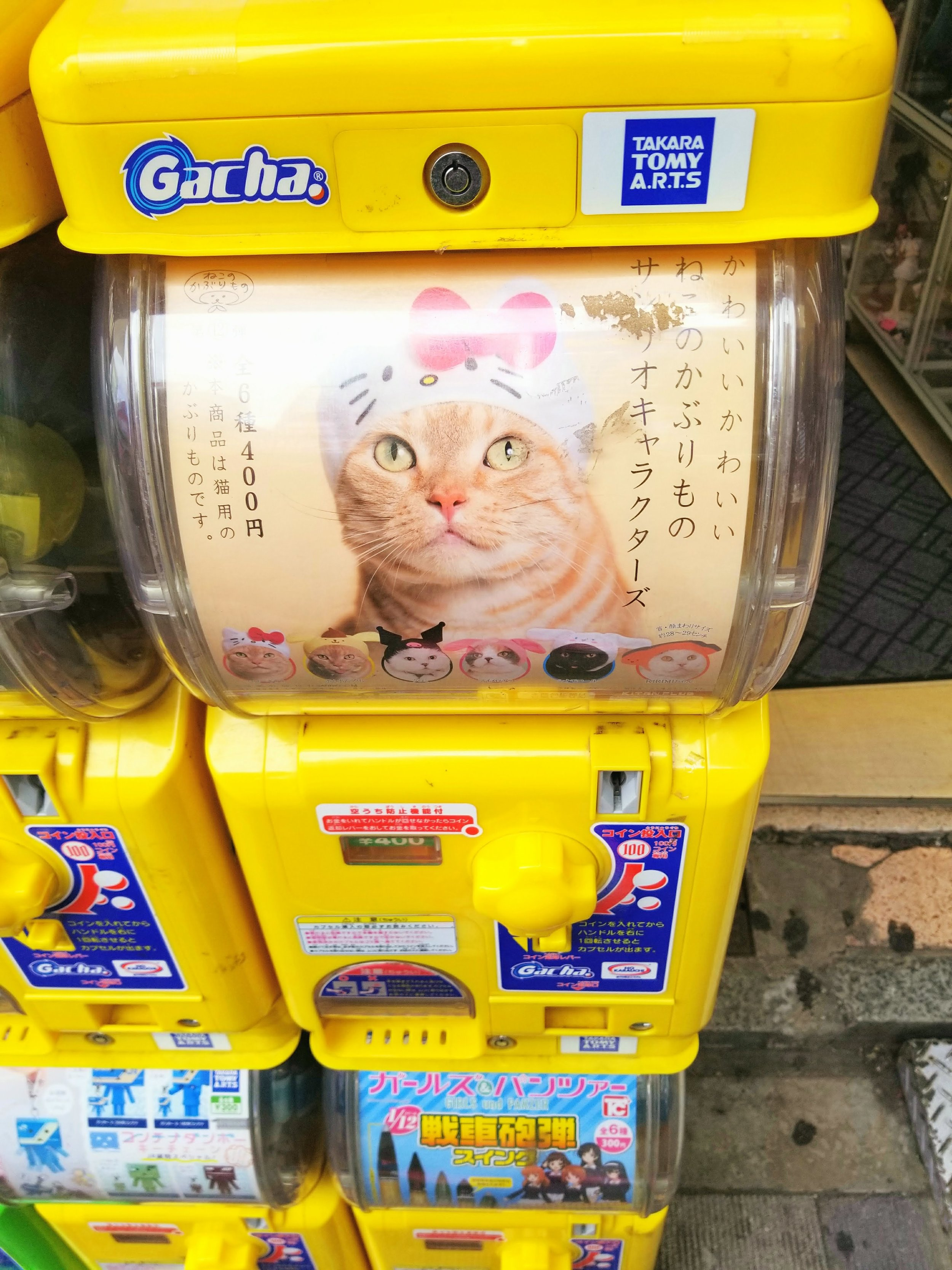 uprooted-traveler-cat-vending-machine-foolproof-guide-to-tokyo
