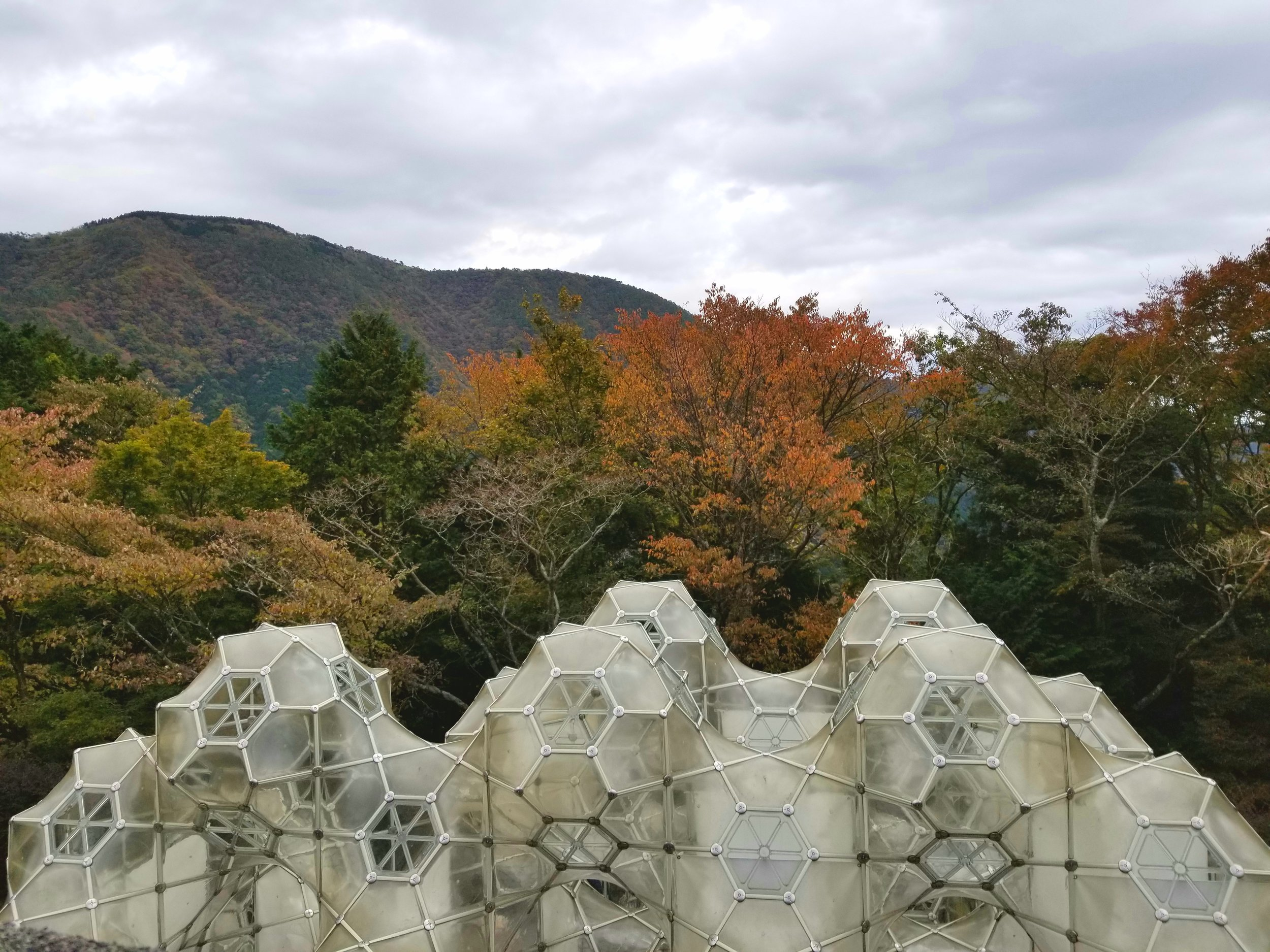 uprooted-traveler-mount-hakone-vegan-guide-open-air-museum