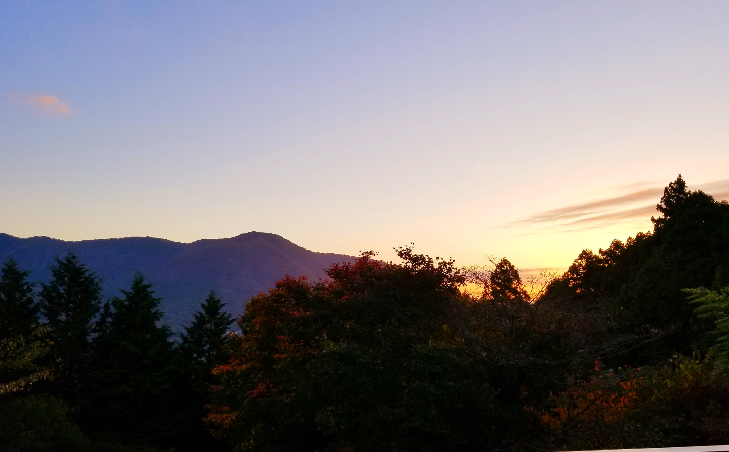 uprooted-traveler-mount-Kamiyama-sunrise-vegan-guide-to-hakone